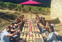 Journée pic nic dans les vignes blogueurs Var / Une journée superbe organisée par les vignerons de taradeau