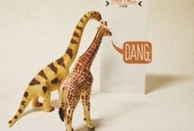 Giraffes / by Kay Schott