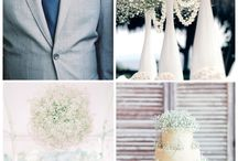 Baby Breath - Gypsophila - million stars for wedding / baby's breath, million stars - wedding decorations