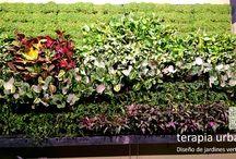 Jardín Vertical Restaurante Albores / Instalación realizada en dos días con sistema de fertirriego integrado en espacio técnico bajo el jardín vertical.  Sistema en exterior pero protegido, por lo que se resuelve con sistema Fytotextile de interior.