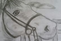 koně moje výroba