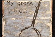 Banjos and Bluegrass