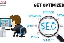 Search Engine Optimization / Search Engine Optimization Services