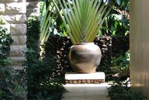Pots as focal points