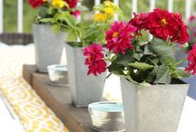 How Does Your Garden Grow / Gardening and planter growing tips, yard art, outdoor furniture and more. / by Rebecca Edwards