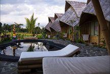 Travel / Hotel