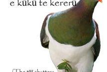 Whakatau(a)ki +