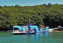 Fun Ferries