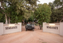 Simbavati Game Drives / Game drives at Simbavati River Lodge are viewed from an open 4 x 4. Children 6 years & over allowed on game drives.