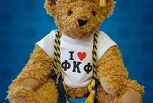 PK the Bear / PK the Bear, Phi Kappa Phi's mascot, loves to travel. Follow his adventures as he travels the world sporting his Phi Kappa Phi pride!