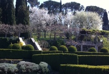 Garden - Tuscany / Country outdoor living