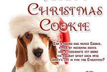 Josey's Christmas Cookie / In the blink of an eye; Josey lost the most important people in her life, her parents. 