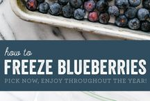 Blueberries / Blueberry dishes & recipes