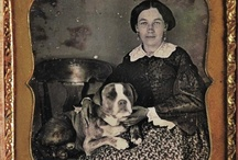 19th century dogs / by Katie Underwood