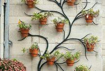 bahçe fikirleri
