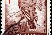 postzegels / postzegels