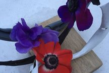 Spring 2015 / Spring flowers and ideas 2015