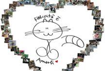 OASI DEI MICI FELICI / Dove c'è un gatto c'è Felicità & Amore... dove ce ne sono tanti c'è un Universo di Felicità & Amore! B:-)