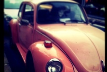 VW ~ My Dream