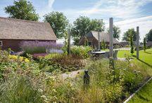 Landelijke tuin / Landelijke tuin