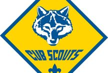 Kid Stuff - Cub Scout Den Leader / by Nicolina Tipaldo