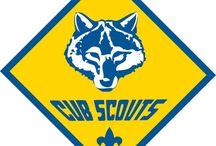 Kid Stuff - Cub Scout Den Leader / by Nicolina Tipaldo
