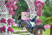 Lovak az életem... / Lovas szív és lovas lélek ,  Lovas leszek , amíg élek