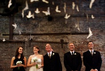 A day, One day / All things wedding