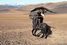 Hamid Sardar-Afkhami / by Desert Heart