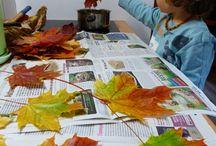 Nápady - Podzim