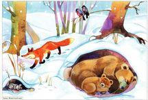zvieratá v zime