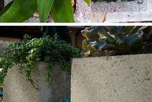 Garden Creativities