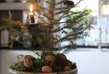 Advent / Making and Celebrating