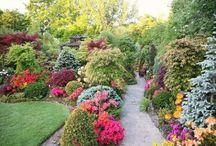 Gardens to Heal the Soul / pretty gardens