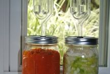 Canning and food Preservation / by Diane Linkert