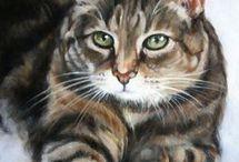 Cat oil painting ref