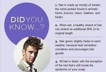 Hair Daily Fun Facts