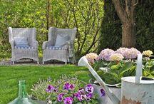 Zahrada / Zahrada, květiny, nápady
