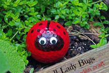 Ladybird golfballs