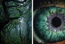 human || nature