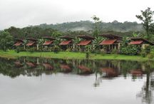 The Ecolodge / Picture of Maquenque Ecolodge, a place ideal for lovers of nature. It is strategically located within Maquenque National Wildlife Refuge, bordering the San Carlos River.