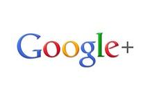 Search Engine Optimization / Search Engine Optimization