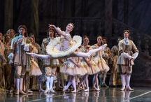 2012-2013 Season / Colorado Ballet's 2012-2013 season included The Sleeping Beauty, The Nutcracker, Ballet MasterWorks and Light/The Holocaust & Humanity Project