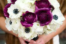 Düğün cicegi