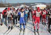 Zawody / Cross-country ski race