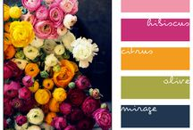 Color Inspiration / Grouping colors together in a captivating way for quilt projects, and design ideas. / by Amy Ellis