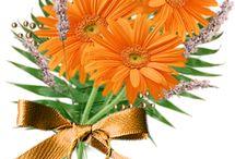 Květiny-vlastní výroba / dekorace