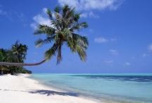 Sol, strand og palmer