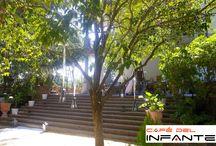 Bodas / Celebra tu boda en los Jardines del Café del Infante