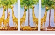 More giraffes / I already found a brilliant giraffe board, but I have the urge to add one of my own too. So here goes.